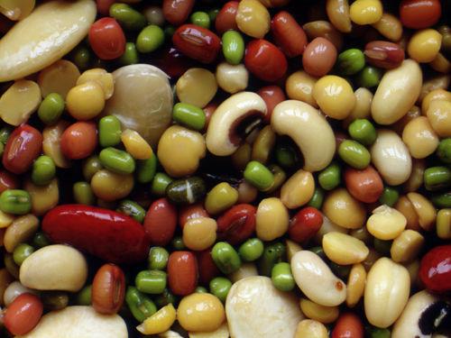 6. 豆を食べない : 知らないと危...